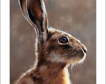 Hare Wildlife Portrait by award winning artist JOHN SILVER. Personally signed A4 or A3 size Print. HA001SP