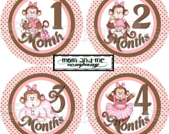 Baby Monthly Stickers set Baby Shower gift 12 Months Infant Month stickers Onepiece Stickers Baby girl Monkeys age stickers Belly Stickers