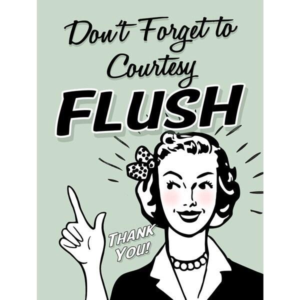 Courtesy Flush Funny Bathroom Wall Decal 46702
