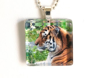 Tiger Photo Pendant Necklace - Photo Jewelry - Photo Necklace - Tiger Necklace - Wildlife Pendant - 24 Inch Silver Plated Ball Chain Incl
