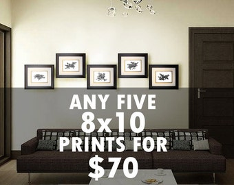 "5 Prints for 70 USD - Choose five 8"" x 10"" prints - Multiple Order Discount - Christmas Gift Idea - Home Decor Map Art"