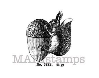 Squirrel stamp / Squirrel with acorn / Unmounted rubber stamp or cling stamp option (140213)
