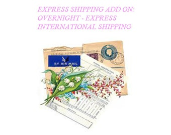 EXPRESS INTERNATIONAL SHIPPING - Modern Mummy Maternity