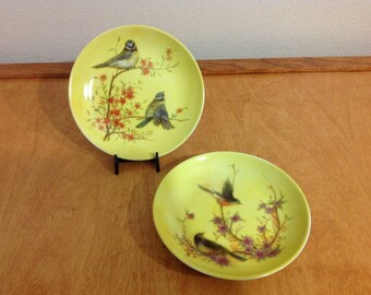 Two Yellow Decorative Plates with Birds