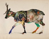 Fine Art Silhouette Reindeer Collage Print - Vintage, Illustration, Floral, Painting, Fabric, Pattern, Silhouette, Deer, Antlers