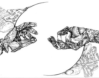 11x14 Art Print (Wings)