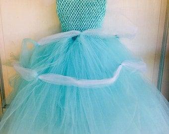 Princess Cinderellie tutu dress