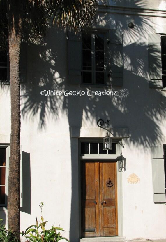 Palm Shadow, Downtown Charleston SC