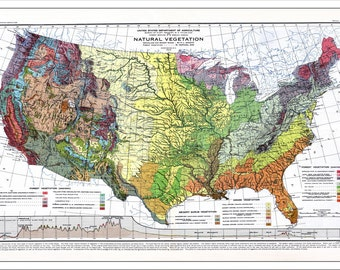 USA Map, Map of the USA, World Map, America Map, Topo Map, Historic Map, Vintage Map, Old Map