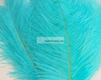 Diamond Blue/Aqua/Coral/Burgundy/Brown Ostrich Feathers centerpieces 12 pcs (GA,USA)