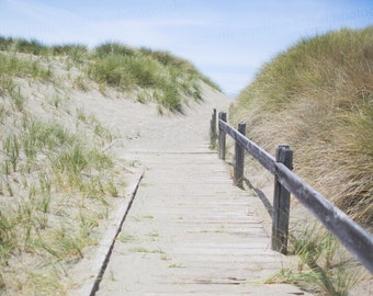 Northern Caifornia Photography, Bodega Bay Photography, Sand Dune Photography, Beach Photo Art, 8x10 Photo, Art Decor