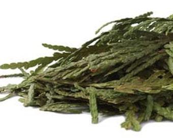Cedar Leaf Tips, Wild Harvested