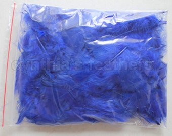 """10g (0.35Oz) royal blue 3~4"""" turkey plumage feathers 80~120 counts, for crafting, sewing, etc, SKU: 7G41"""