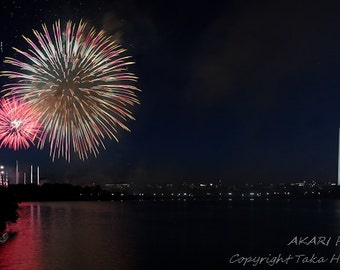 Fireworks Photography : Wall Decor - Washington Fourth of July Fireworks