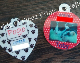 Personalised Pet ID Tag, Dog Identity Tag, Cat Collar Identity Tag