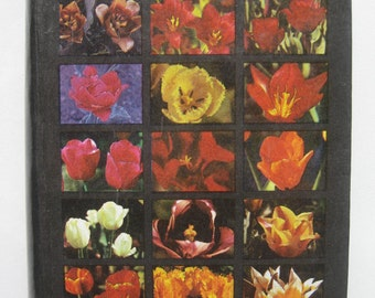 Reference Book Tulips Sorts Vintage 1991 Latvian Russian Texts