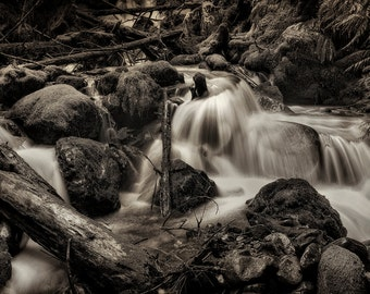 Landscape Photography, Waterfalls, Spring, Cascade Mountains, Fine Art Black and White Photography, Wall Art, Wall Decor, Home Decor