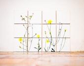 Sponte Collection | Tarassaco details: 12 tiles 10x10cm