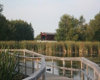 Sackville Waterfowl Park 2, Sackville, New Brunswick