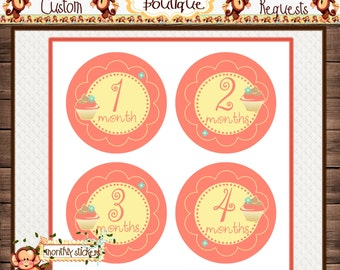 Cupcake Monthly Baby Milestone Stickers Baby Girl One-Piece Baby Stickers Monthly Baby Stickers Baby Month Stickers  {M106}