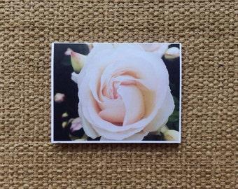 Roses in Paris | Blank Cards