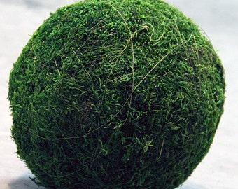 10 Inch Moss Kissing Balls Green Pomander Sphere