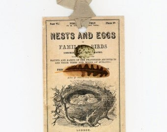 Nest and Egg Gift Tags - Vintage Tags - Feather Tags - Egg Tags - Nest Tags