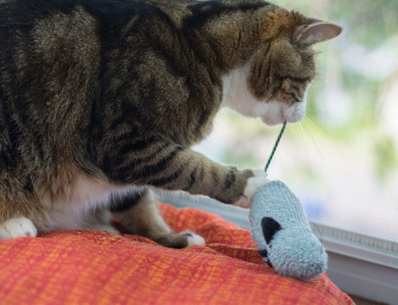 Extra large, crinkly, wool sock, organic catnip cat toy mouse
