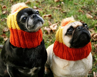 Candy Corn Dog Hat - Pug Hat - Dog Hats - Pug Hats - Dog Costume - Pug Costume - Dog Halloween Costume