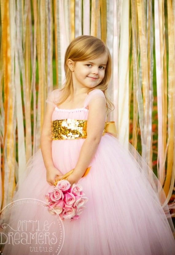Sweet Pink Tutu Dress with Gold Sequin Sash