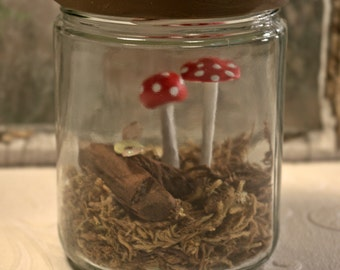 Mushroom Assemblage - glass jar-moss-mushrooms-firefly