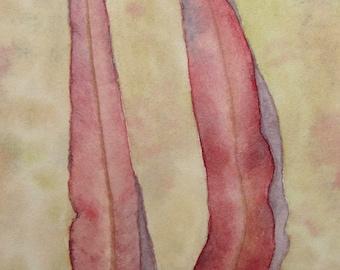 2 gum leaves ~ original watercolour painting