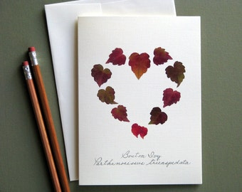 Boston Ivy leaves, heart shape leaves, greeting card, no.1112