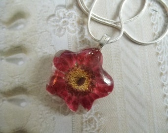Purple Daisy Glass Flower Shaped Pressed Flower Pendant-Plum Crazy For Daisies-Gifts Under 25-Nature's Art-Symbolizes Innocence, Loyal Love