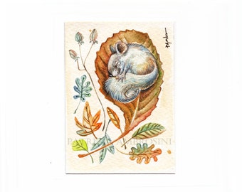 Original ACEO Woodland dormouse   Original Painting- Watercolor- Card -collectible- fine art