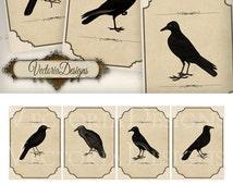 Black Bird Labels vintage printable images instant download digital collage sheet VDLAGO0535