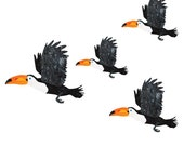 Toucan Wall Stickers for Kids Jungle Theme Wall Mural (sku:119-stick-17)