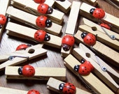 20 Little Lady Bug Clothespins -SOOOO SWEET -  - Ladybug -  Perfect for displaying art, notes and  Hanging an alphabet