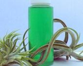 Fertilizer for your Air Plants
