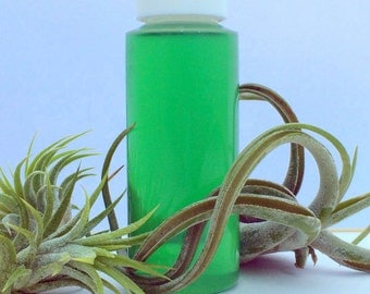 Fertilizer for your Air Plants