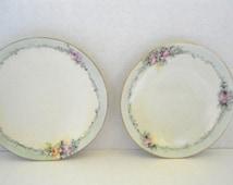 Pair of Dessert Plates by Royal Rudolstadt Prussian Empire Circa.1900s