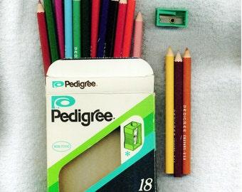 Pedigree Pencil Crayons Plast-O-Led