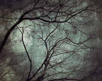 Fantasy print, Dark Art, Branches, Tree, Mystery, Fine art photography, creepy, botanical, green, Wall decor, iphoneography, under 50