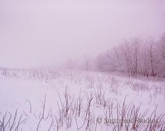 Misty Field 1 -- Fine Art  Photography Print -- Photo, Home Decor, Landscape, Winter, Snow, Art