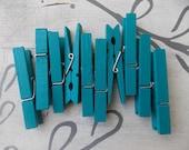Caribbean Blue Clothespins