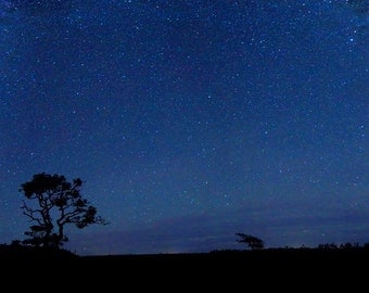 Night Sky Photography Milky Way Galaxy Stars Space Photo Nantucket Moors Picture Large Wall Art Oversized Panorama Print Navy Blue Black