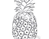 SALE!! Pineapple tropical summer ink pen art print A4 Size