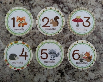 Woodland Animals Monthly Infant Stickers mms002