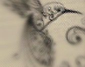 Hummingbird Sketch Peyote Stitch Bracelet Pattern