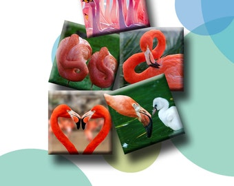 FLAMINGOES  - 30 x 1 inch square printable images for glass pendants, magnets, journalling, decoupage etc.  Instant Download #175.